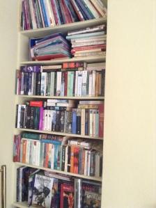TBR Shelf 1
