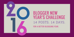parajunkee blogger new year's challenge