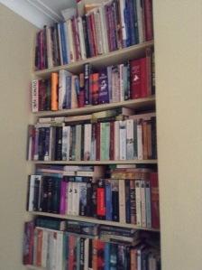 my TBR bookshelf